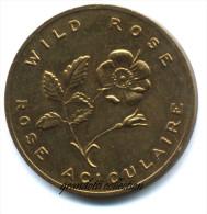 FIORI DEL CANADA WILD ROSE ALBERTA 1905 - Noodgeld