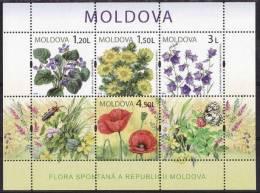 Moldavie Moldova 2009 Yvertn° Bloc 48 *** MNH Cote 12,00 Euro Flore - Moldavie