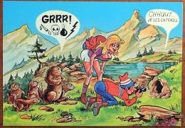 CP - Montagne - Photographe De Marmottes En Colère - N° 6 - Humor
