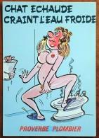 CP - Série Proverbe - Proverbe Plombier - 873/2 - Chat échaudé Craint L'eau Froide - Humor