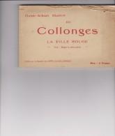 GUIDE-ALBUM Illustré DE COLLONGES -20 VUES (pas Cp) - Andere Gemeenten