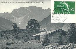 Diemtigtal - Grimmialp - Alpenlandschaft Mit Gsür            Ca. 1910 - BE Berne