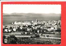83 SAINT TROPEZ Cpsm Vue Générale   65 68 Sept - Saint-Tropez