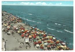 1965, Foggia - Margherita Di Savoia - La Spiaggia. - Foggia