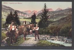 8425-TOGGENBURGER-BAUERN-1912-FP - Paysans