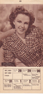 Calendar Photo 100x160mm - Judy Garland - Schauspieler