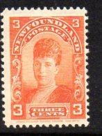 Newfoundland Canada 1897-1918 3c Queen Alexandra, Hinged Mint - Newfoundland