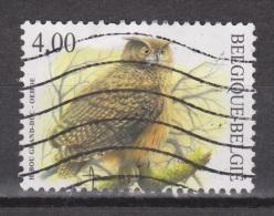 Belgie , Belgique, Belgium Used  ; Uil Owl, Hibou, Buho, Oehoe NOW MANY BIRD STAMPS - Eulenvögel