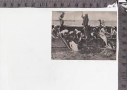 CO-1689 TRIPOLI PESCA DEL TONNO IN MARE PESCA PESCATORI - Cromo