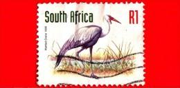 SUD AFRICA - 1998 - Animali - Gru - Wattled Crane - 1 - Usati