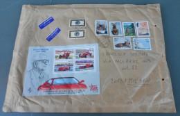 Italia, Italy 2001;serie Completa Dei Gatti Del 1993 + Leggi Retro.Bustone Cm 34 X Cm 25,5; Storia Postale - Domestic Cats