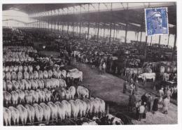 Reroduction CPSM - La Halle Aux Boeufs De La Vilette Devenue Aujourd'hui La Grande Halle, Un Jour De Marché Vers 1960 - Halles