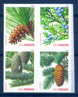 USA 2010  Estados Unidos / Pine Trees Christmas MNH Navidad Nöel Arboles / C8127   34 - Árboles