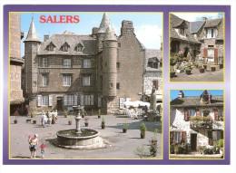 SALERS, Cantal ; Multivues; Maison Du Baillage Sur La Place Tyssandier D´Escous, Vieilles Demeures, TB - Autres Communes