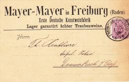 Vins, Allemagne Kunstweinfabrik Mayer-Mayer Freiburg 1888 - Ernährung