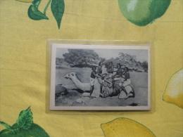 Coloine Italiane Ragazze Cuname  ERITREA Cammello Saeno Nudo - Eritrea