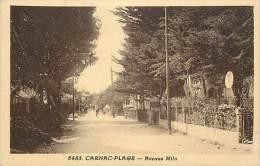 Ref D792- Morbihan - Carnac - Avenue Miln  -editeur Riviere Bureau A Pons - - Carnac