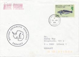 FARADAY - 1989 - Britisches Antarktis-Territorium  (BAT)