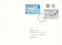 BAT - FARADAY - 1991 - Britisches Antarktis-Territorium  (BAT)