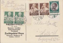 DR Werbekarte Schweine Mif Minr.541,2x 556,2x 558 Hamburg 2.6.35 Gel. Nach Halle - Briefe U. Dokumente