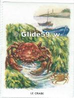 Image Scolaire - Le Crabe - Vieux Papiers