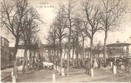 Ciney Le Jour De La Foire (marché) Vers Mont Gauthier 1913 - Ciney