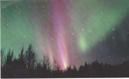 Northen Lights As Seen From Wisconsin. (Voir Commentaires) - Etats-Unis