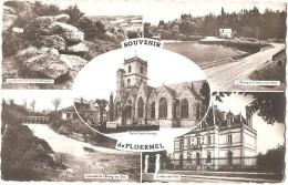 Dépt 56 - PLOËRMEL - Souvenir De Ploërmel - Rochers De La Ville Bouquet, L'Étang Et Le Nouveau Pont... (CPSM Multi-vues) - Ploërmel