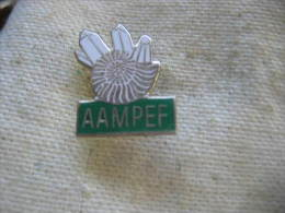 Pin's AAMPEF ( Association Amateurs de Min�ralogie et de Pal�ontologie de l'Est de la France ).