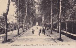 MONTEREAU  LE BD LEBOEUF DE MONT GERMONT (DIL256) - Montereau