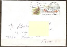BELGIQUE    -   2001   -  Belle Lettre Pour La France.    Timbres / Monuments /  Oiseaux/ - Belgique