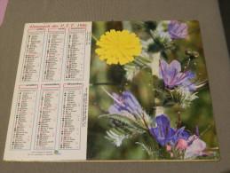 Calendrier 1986 - OLLER - Fleurs Sauvages - 227 - Photo Tapador De Selva - Age - Calendari