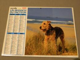 Calendrier 1991 - EYRELLE - PICTOR - Labradors - Terrier - Groot Formaat: 1991-00