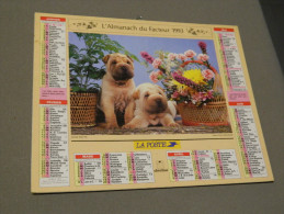 Calendrier 1993 - OBERTHUR - Jeunes Shar Pei - Photo VLOO - Groot Formaat: 1991-00