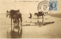 251 La Panne .Pêcheurs De Crevettes - De Panne