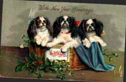 21 Chien Illustrée - New Year Greetings 3 King Charles Corbeille Houx Gui - Dogs