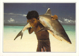 Asie > MALDIVES  (A) Islands White Tipped Shark Carried By A Young Child (enfant -requin à Pointe Blanche)   *PRIX FIXE - Maldives