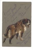 11433 - Chien Bouvier  Dog Carte En Relief - Cani