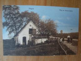 Hagen I. Westf., Weg Zur Bismarcksäule, Gelaufen 1913 !! - Hagen
