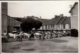 29 - ROSCOFF - Sanatorium - Chariots - Roscoff