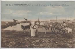 85  -  ILE DE NOIRMOUTIER  -  La Récolte Du Sel Marin , Un Des Principaux Produits Du Pays - Ile De Noirmoutier