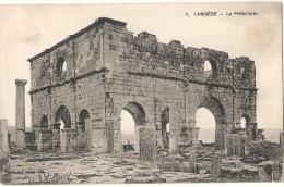 LAMBESE - Algérie - Le Préventorium  TTB Neuve - Algérie