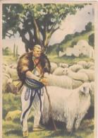 Illustratore Lubatti - Pastore Dell Interno Albanese - Illustrateurs & Photographes