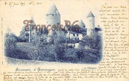 (FR) Souvenir D'Estavayer - Le Château - Bon état - 2 SCANS - BE Berne