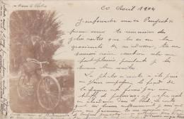 """19691 Carte Photo Vélo """"Peugeot""""  1904. Photo Prise """"au Bled, Palmiers"""". Cycliste"""