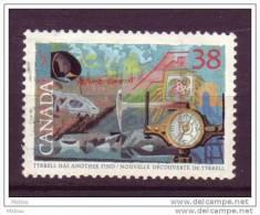 Canada, Bateau, Boussole, Compass, Boat, Os, Bone, Exploration, Piolet, Géographie, Geography, Skull - Maritime