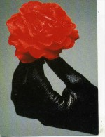 "ILLUSTRATEUR  /  L 86   ""  JAN SMIT   "" N° C 451   ED. ART UNLIMITED D´AMSTERDAM   CPM / CPSM 10 X 15 - Other Illustrators"