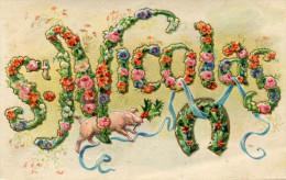 COCHON(GAUFREE) SAINT NICOLAS - Cochons