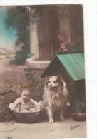 Bébé Dans Panière  Avec Un Chien - Babies