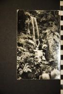CP 74 SAMOENS CASCADE DE LA JAYSINIA - Samoëns